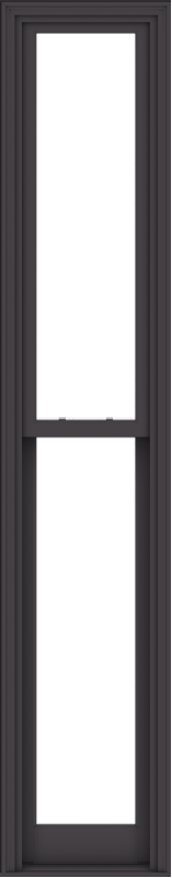 WDMA 20x102 (19.5 x 101.5 inch)  Aluminum Single Hung Double Hung Window without Grids-3