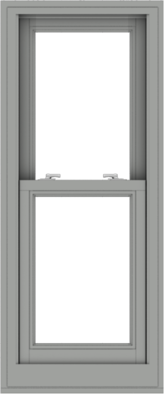 WDMA 20x48 (19.5 x 47.5 inch)  Aluminum Single Double Hung Window without Grids-1
