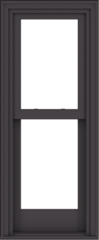 WDMA 20x48 (19.5 x 47.5 inch)  Aluminum Single Hung Double Hung Window without Grids-3