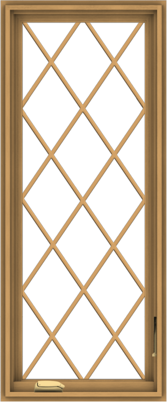 WDMA 20x48 (19.5 x 47.5 inch) Pine Wood Dark Grey Aluminum Crank out Casement Window without Grids with Diamond Grills