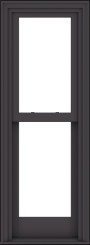 WDMA 20x54 (19.5 x 53.5 inch)  Aluminum Single Hung Double Hung Window without Grids-3