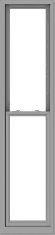 WDMA 24x102 (23.5 x 101.5 inch)  Aluminum Single Double Hung Window without Grids-1