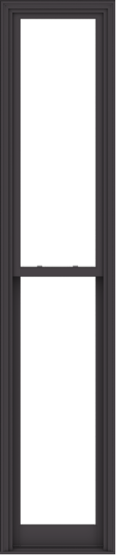 WDMA 24x114 (23.5 x 113.5 inch)  Aluminum Single Hung Double Hung Window without Grids-3