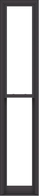 WDMA 24x120 (23.5 x 119.5 inch)  Aluminum Single Hung Double Hung Window without Grids-3