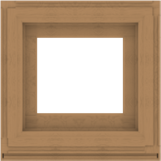 WDMA 24x24 (23.5 x 23.5 inch) Composite Wood Aluminum-Clad Picture Window without Grids-1