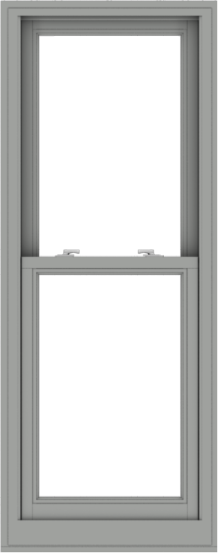 WDMA 24x61 (23.5 x 60.5 inch)  Aluminum Single Double Hung Window without Grids-1