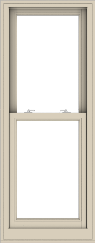 WDMA 24x61 (23.5 x 60.5 inch)  Aluminum Single Hung Double Hung Window without Grids-2