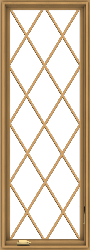 WDMA 24x66 (23.5 x 65.5 inch) Pine Wood Dark Grey Aluminum Crank out Casement Window without Grids with Diamond Grills