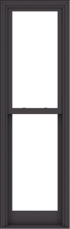 WDMA 24x78 (23.5 x 77.5 inch)  Aluminum Single Hung Double Hung Window without Grids-3