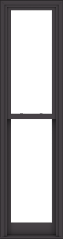 WDMA 24x90 (23.5 x 89.5 inch)  Aluminum Single Hung Double Hung Window without Grids-3