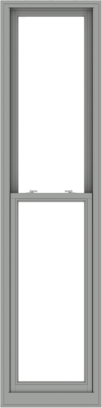 WDMA 24x96 (23.5 x 95.5 inch)  Aluminum Single Double Hung Window without Grids-1