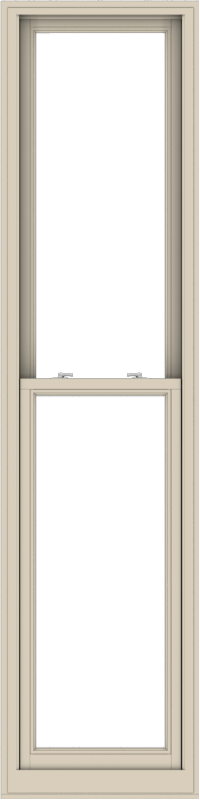 WDMA 24x96 (23.5 x 95.5 inch)  Aluminum Single Hung Double Hung Window without Grids-2