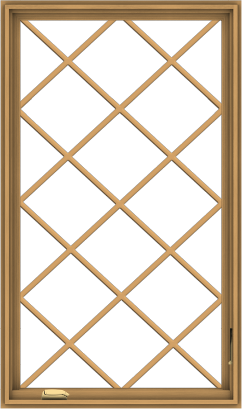 WDMA 32x54 (31.5 x 53.5 inch) Pine Wood Dark Grey Aluminum Crank out Casement Window without Grids with Diamond Grills