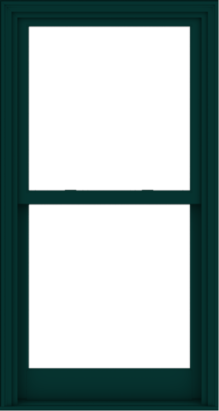 WDMA 32x60 (31.5 x 59.5 inch)  Aluminum Single Hung Double Hung Window without Grids-5
