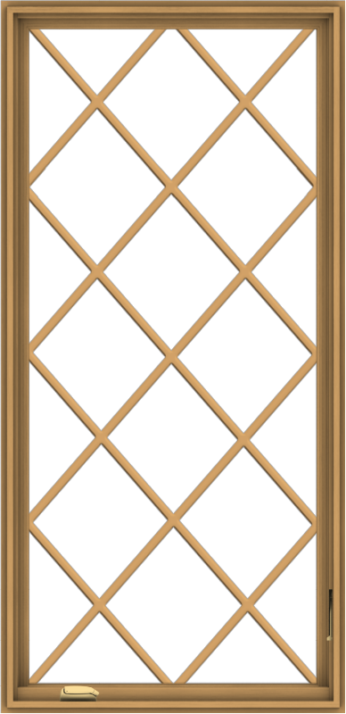 WDMA 32x66 (31.5 x 65.5 inch) Pine Wood Dark Grey Aluminum Crank out Casement Window without Grids with Diamond Grills