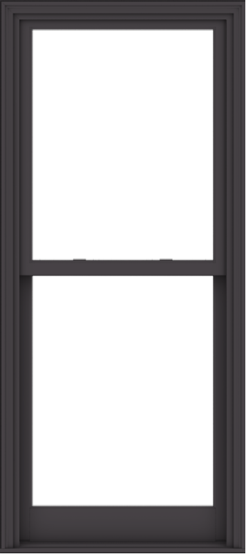 WDMA 32x72 (31.5 x 71.5 inch)  Aluminum Single Hung Double Hung Window without Grids-3