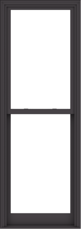 WDMA 32x90 (31.5 x 89.5 inch)  Aluminum Single Hung Double Hung Window without Grids-3