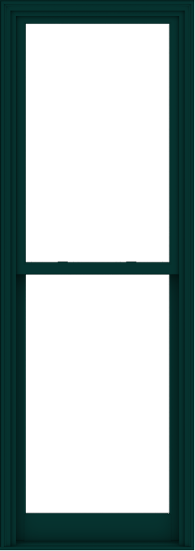 WDMA 32x90 (31.5 x 89.5 inch)  Aluminum Single Hung Double Hung Window without Grids-6