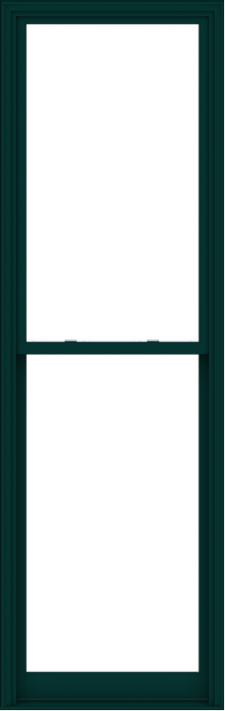 WDMA 36x114 (35.5 x 113.5 inch)  Aluminum Single Hung Double Hung Window without Grids-5