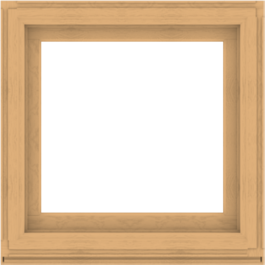 WDMA 36x36 (35.5 x 35.5 inch) Composite Wood Aluminum-Clad Picture Window without Grids-3