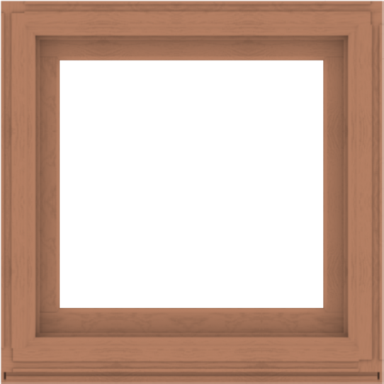 WDMA 36x36 (35.5 x 35.5 inch) Composite Wood Aluminum-Clad Picture Window without Grids-4
