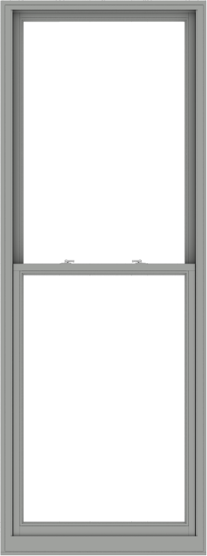 WDMA 38x102 (37.5 x 101.5 inch)  Aluminum Single Double Hung Window without Grids-1