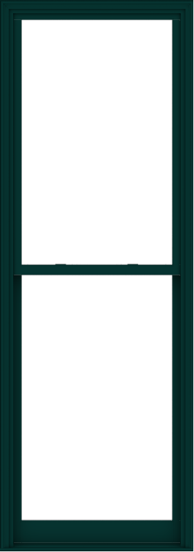 WDMA 38x108 (37.5 x 107.5 inch)  Aluminum Single Hung Double Hung Window without Grids-5