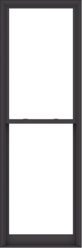 WDMA 38x114 (37.5 x 113.5 inch)  Aluminum Single Hung Double Hung Window without Grids-3
