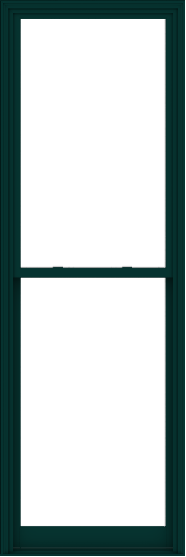 WDMA 38x114 (37.5 x 113.5 inch)  Aluminum Single Hung Double Hung Window without Grids-5