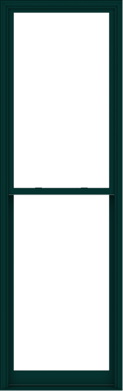 WDMA 38x120 (37.5 x 119.5 inch)  Aluminum Single Hung Double Hung Window without Grids-5