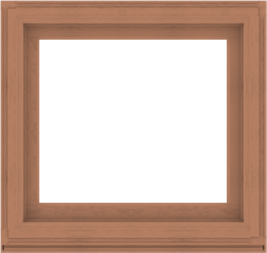 WDMA 38x36 (37.5 x 35.5 inch) Composite Wood Aluminum-Clad Picture Window without Grids-4