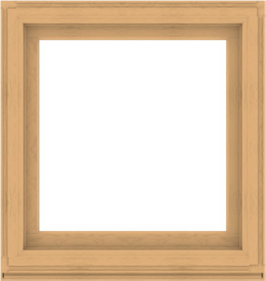 WDMA 38x40 (37.5 x 39.5 inch) Composite Wood Aluminum-Clad Picture Window without Grids-3