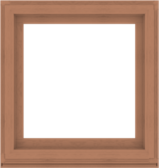 WDMA 38x40 (37.5 x 39.5 inch) Composite Wood Aluminum-Clad Picture Window without Grids-4