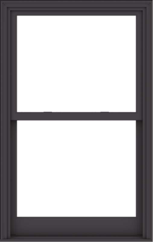 WDMA 38x60 (37.5 x 59.5 inch)  Aluminum Single Hung Double Hung Window without Grids-3