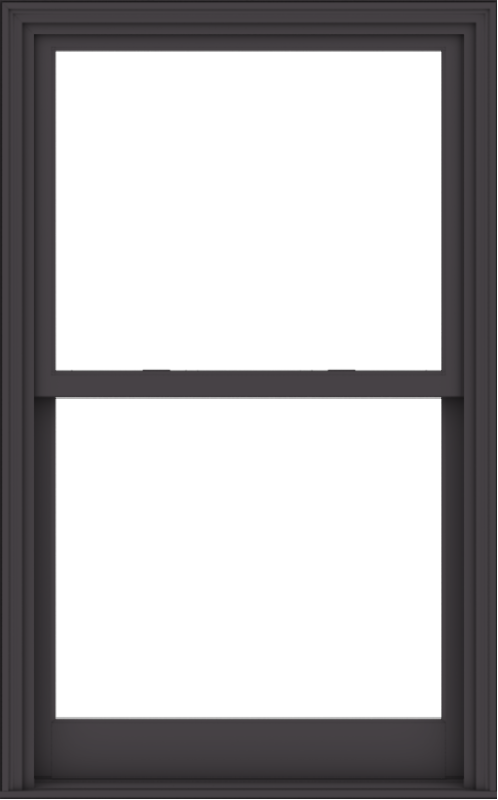 WDMA 38x61 (37.5 x 60.5 inch)  Aluminum Single Hung Double Hung Window without Grids-3