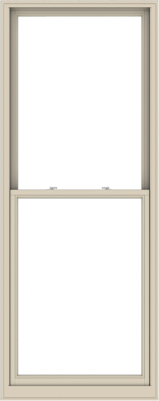 WDMA 38x96 (37.5 x 95.5 inch)  Aluminum Single Hung Double Hung Window without Grids-2