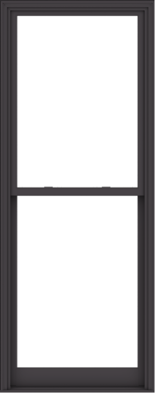 WDMA 38x96 (37.5 x 95.5 inch)  Aluminum Single Hung Double Hung Window without Grids-3