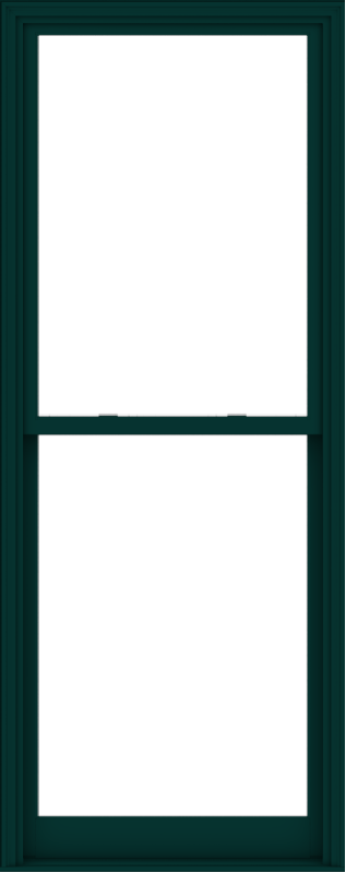 WDMA 38x96 (37.5 x 95.5 inch)  Aluminum Single Hung Double Hung Window without Grids-5