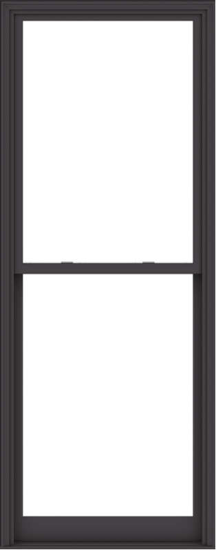 WDMA 40x102 (39.5 x 101.5 inch)  Aluminum Single Hung Double Hung Window without Grids-3