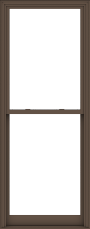 WDMA 40x102 (39.5 x 101.5 inch)  Aluminum Single Hung Double Hung Window without Grids-4