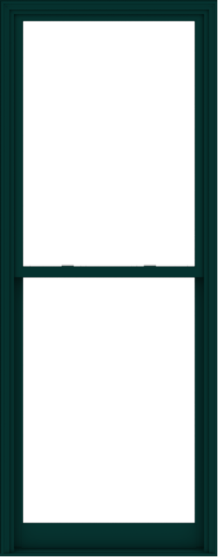 WDMA 40x102 (39.5 x 101.5 inch)  Aluminum Single Hung Double Hung Window without Grids-5