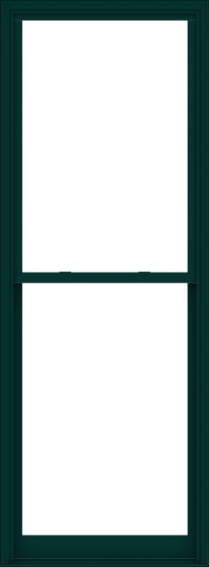 WDMA 40x108 (39.5 x 107.5 inch)  Aluminum Single Hung Double Hung Window without Grids-5