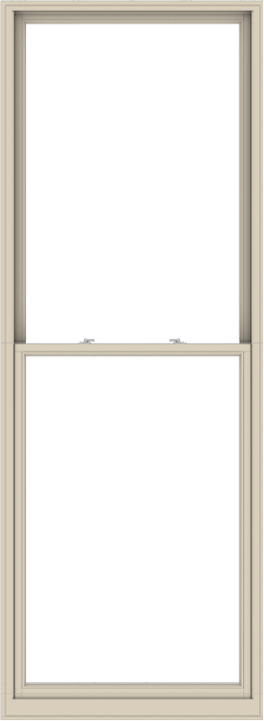 WDMA 44x120 (43.5 x 119.5 inch)  Aluminum Single Hung Double Hung Window without Grids-2