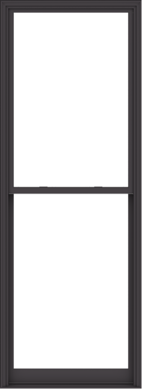 WDMA 44x120 (43.5 x 119.5 inch)  Aluminum Single Hung Double Hung Window without Grids-3