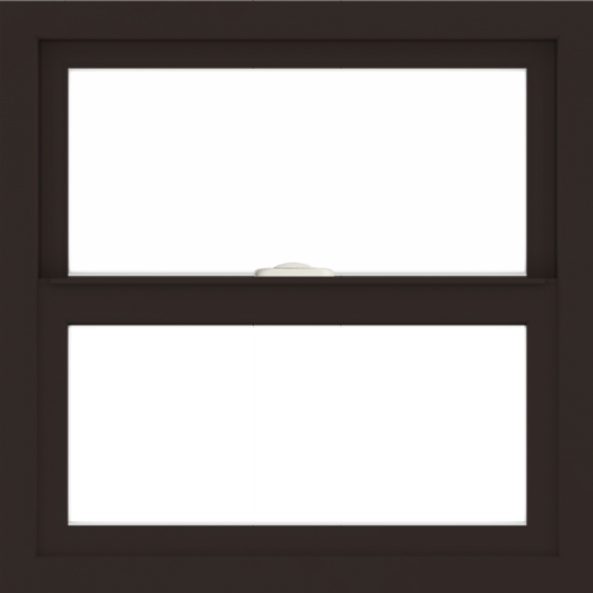 WDMA 24x24 (23.5 x 23.5 inch) Dark Bronze Aluminum Single and Double Hung Window without grids interior