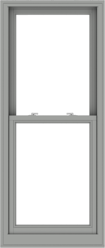 WDMA 28x66 (27.5 x 65.5 inch)  Aluminum Single Double Hung Window without Grids-1