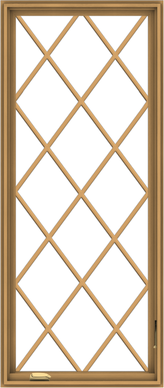 WDMA 28x66 (27.5 x 65.5 inch) Pine Wood Dark Grey Aluminum Crank out Casement Window without Grids with Diamond Grills