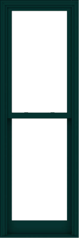 WDMA 28x84 (27.5 x 83.5 inch)  Aluminum Single Hung Double Hung Window without Grids-5
