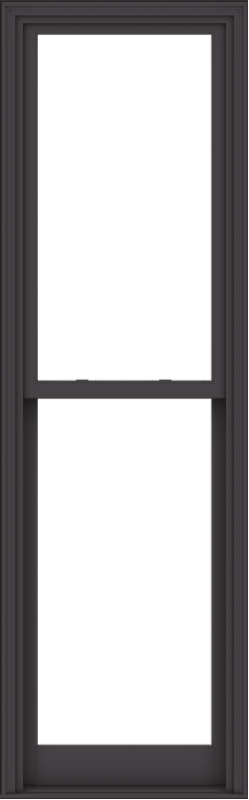 WDMA 28x90 (27.5 x 89.5 inch)  Aluminum Single Hung Double Hung Window without Grids-3