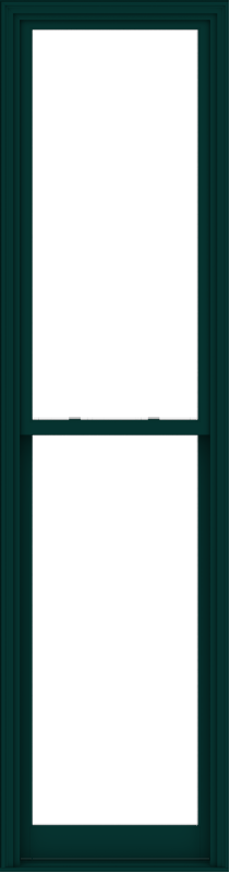 WDMA 30x114 (29.5 x 113.5 inch)  Aluminum Single Hung Double Hung Window without Grids-5